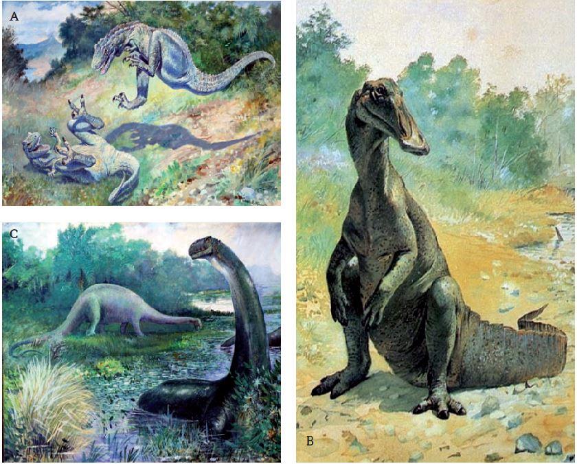 La Renaissance Des Dinosaures Afis Science Association